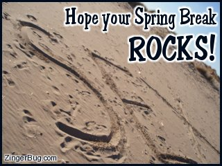 Click to get the codes for this image. Funny photo showing the word Sex written in the sand. The comment reads: Hope your Spring Break ROCKS!