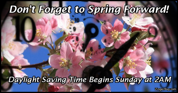 Click to get the codes for this image. This greeting features a photograph of beautiful pink blossoms against a bright blue sky with a clock superimposed in front of them. The caption reads: Don't forget to spring forward, Daylight Saving time begins Sunday at 2AM