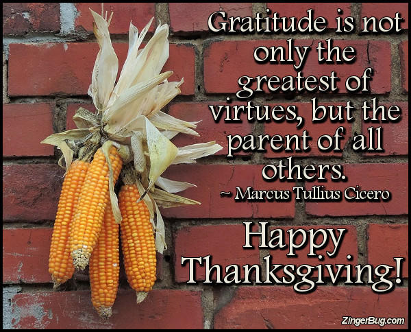 Click to get the codes for this image. Thanksgiving Marcus Cicero Gratitude Quote, Thanksgiving Glitter Graphic, Comment, Meme, GIF or Greeting