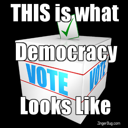 Click to get the codes for this image. This Is What Democracy Looks Like, Election Day Glitter Graphic, Comment, Meme, GIF or Greeting
