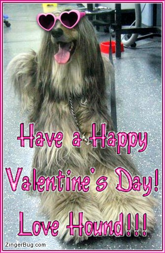 Click to get the codes for this image. This cute photo shows a dog wearing heart shaped sunglasses. The comment reads: Have a Happy Valentine's Day! Love Hound!