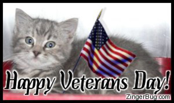 Click to get the codes for this image. This cute photo shows a gray kitten holding an American flag. The comment reads: Happy Veterans Day!
