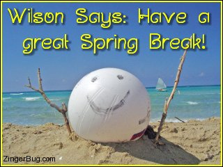 Click to get the codes for this image. This cute photo shows a volleyball sitting on the beach with a smiley face drawn on in. The comment reads: Wilson Says: Have a great Spring Break!
